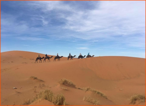 private tour from Fes to Merzouga desert and Marrakech,guided camel ride in Morocco