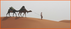 3 day desert tour from Fes to Marrakech,3 day private Fes desert 4x4 trip to Marrakech
